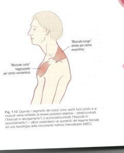 influenze posturali