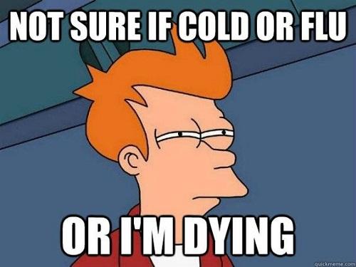 Non so se è raffreddore, febbre o sto morendo